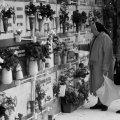 Cimiteri_IMG_9814.jpg.jpg